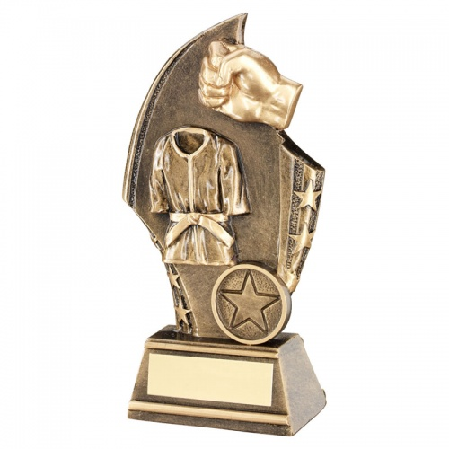 Resin Martial Arts Trophy Plaque RF665