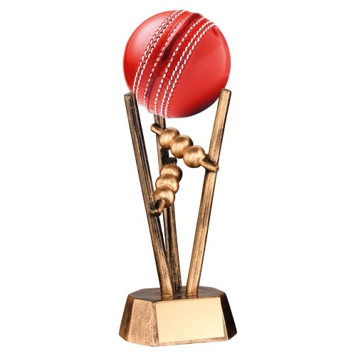 Cricket Match Ball Trophy Stand
