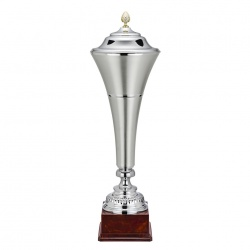 Very Large Silver Vase Trophy 1602