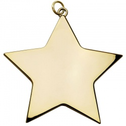 80mm Gold Star Medal