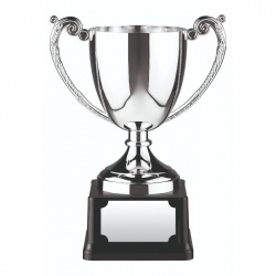Nickel Plated Trophy C2