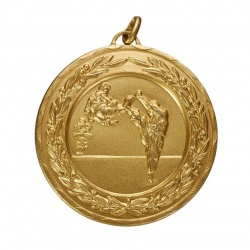 50mm Gold Martial Arts Medal