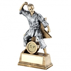 Resin Female Martial Arts Star Figure Trophy