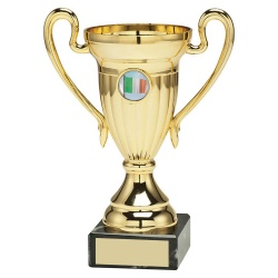 Gold Coloured Trophy Cup with Irish Flag Insert