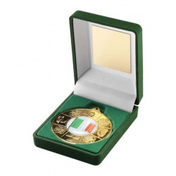 Irish Four Provinces Gold Medal in Presentation Case