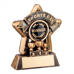 Sports Day Trophy Mini Star in Bronze & Gold