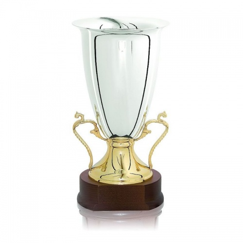 15.75in Silver & Gold Urn Trophy