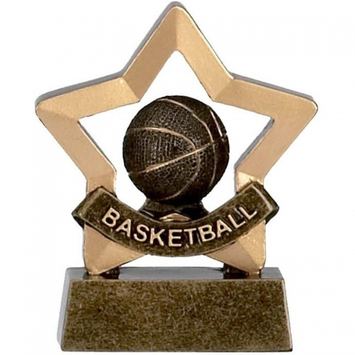 Mini Star Basketball Award