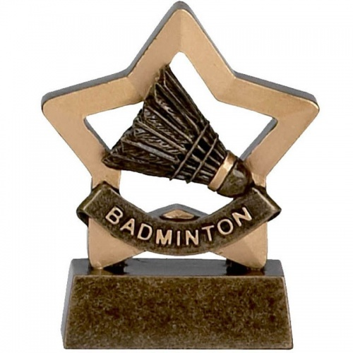 Mini Star Badminton Award