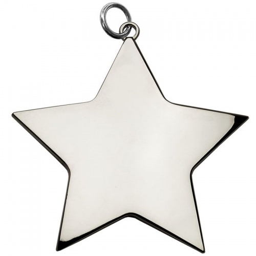 54mm Silver Star Medal