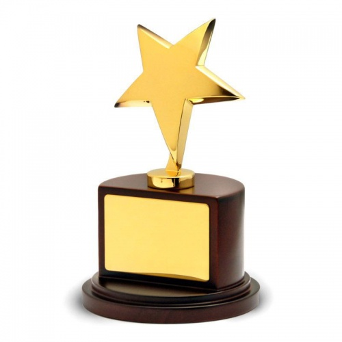 Gold Plated Star Award BG001