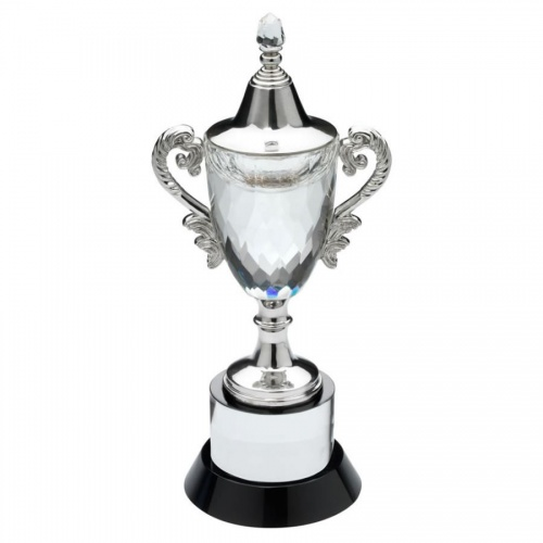 9.5in Clear & Black Glass Trophy Cup