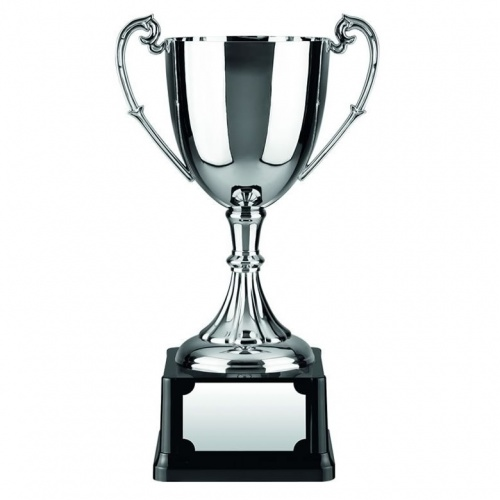Nickel Plated Trophy Cup C9