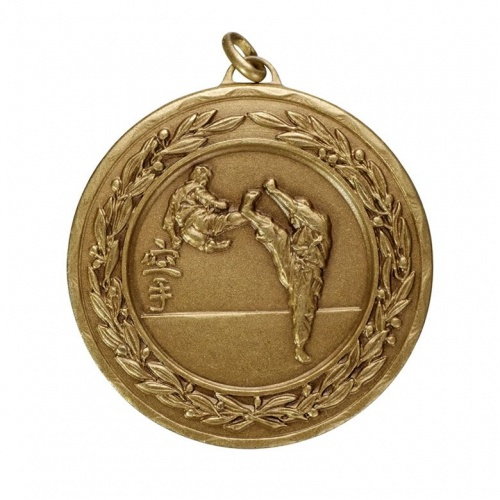 50mm Bronze Martial Arts Medal