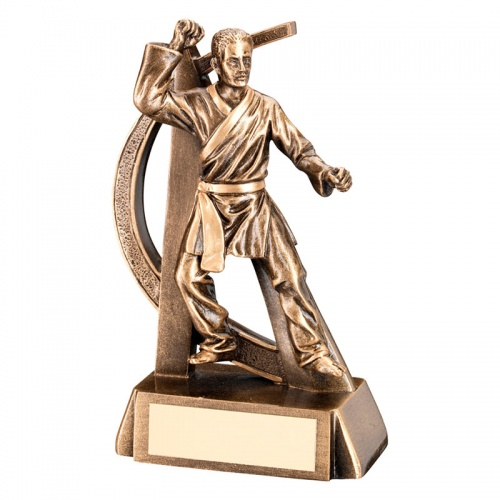 6.75in Martial Arts Figure Trophy