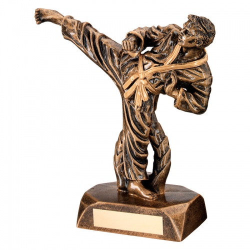 Resin Male martial Arts Figure Trophy