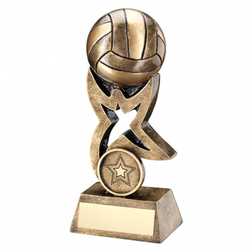 Resin Bronze & Gold Netball Star Award With 3D Ball