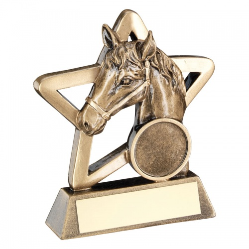 3.75in Resin Equestrian Star Trophy