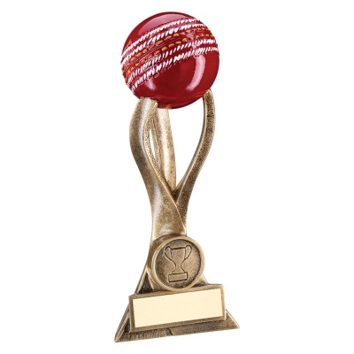 8.5in Resin 3-D Cricket Ball Trophy