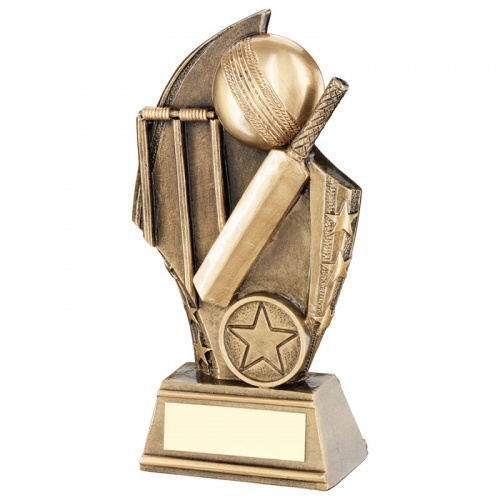 Bronze Cricket Ball Award 6in