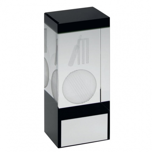 Clear & Black Glass Block with Cricket Motif