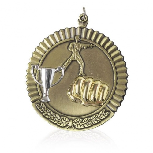 2in Gold Martial Arts Medal MD08G