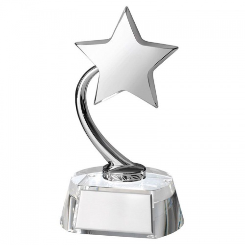 Silver Shooting Star Award TZ016