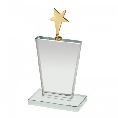 Plaque With Gold Star TZ035