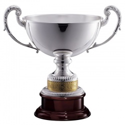 Large Silver Trophy 1144