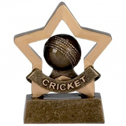 Cricket Mini Star Award