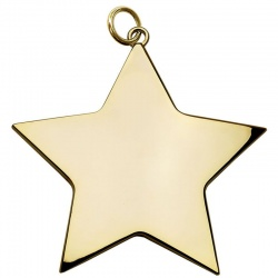 54mm Gold Star Medal
