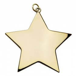 68mm Gold Star Medal