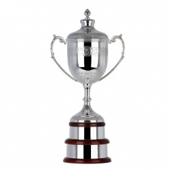 14in Silver Trophy BD369