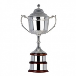 14in Silver Trophy BD644