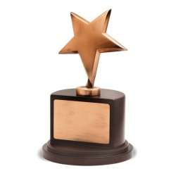 Polished Bronze Star Award BG003