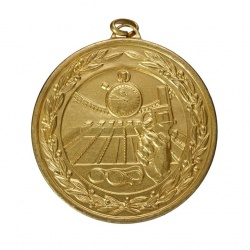 50mm Gold Swimming Medal
