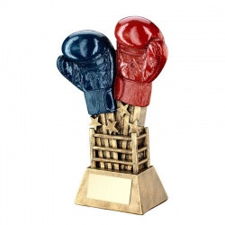 Boxing Gloves and Ring Trophy