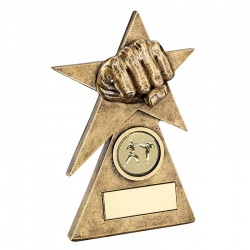 Resin Martial Arts Star Fist Trophy