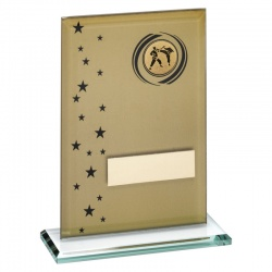 7.5in Gold & Black Glass Martial Arts Plaque