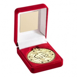 Gold Martial Arts Medal in Red Presentation Case