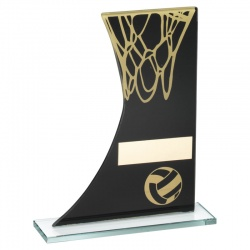 8in Netball Glass Plaque Trophy