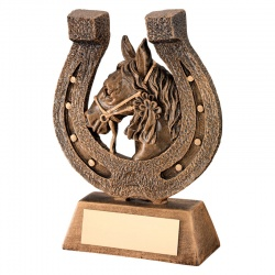 9in Equestrian Horseshoe Award