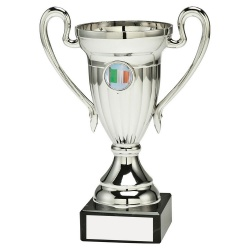 Silver Coloured Trophy Cup with Irish Flag Insert