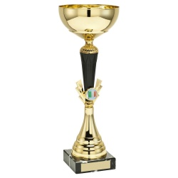 Tall Gold Colour Trophy with Irish Flag Insert