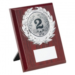Economy Wood Plaque JR34-TY7 5in