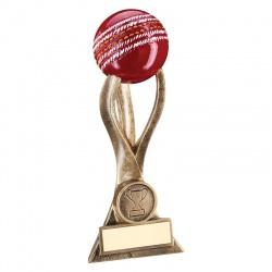 6.5in Resin 3-D Cricket Ball Trophy