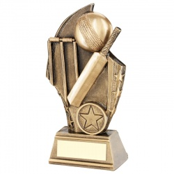 Bronze Cricket Ball Award RF666