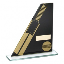 Cricket Black & Gold Glass Plaque