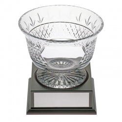 Crystal Panel Trophy Bowl