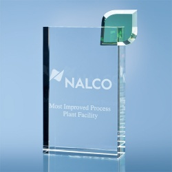 17cm Optical Crystal Eco Excellence Award with a Single Green Leaf